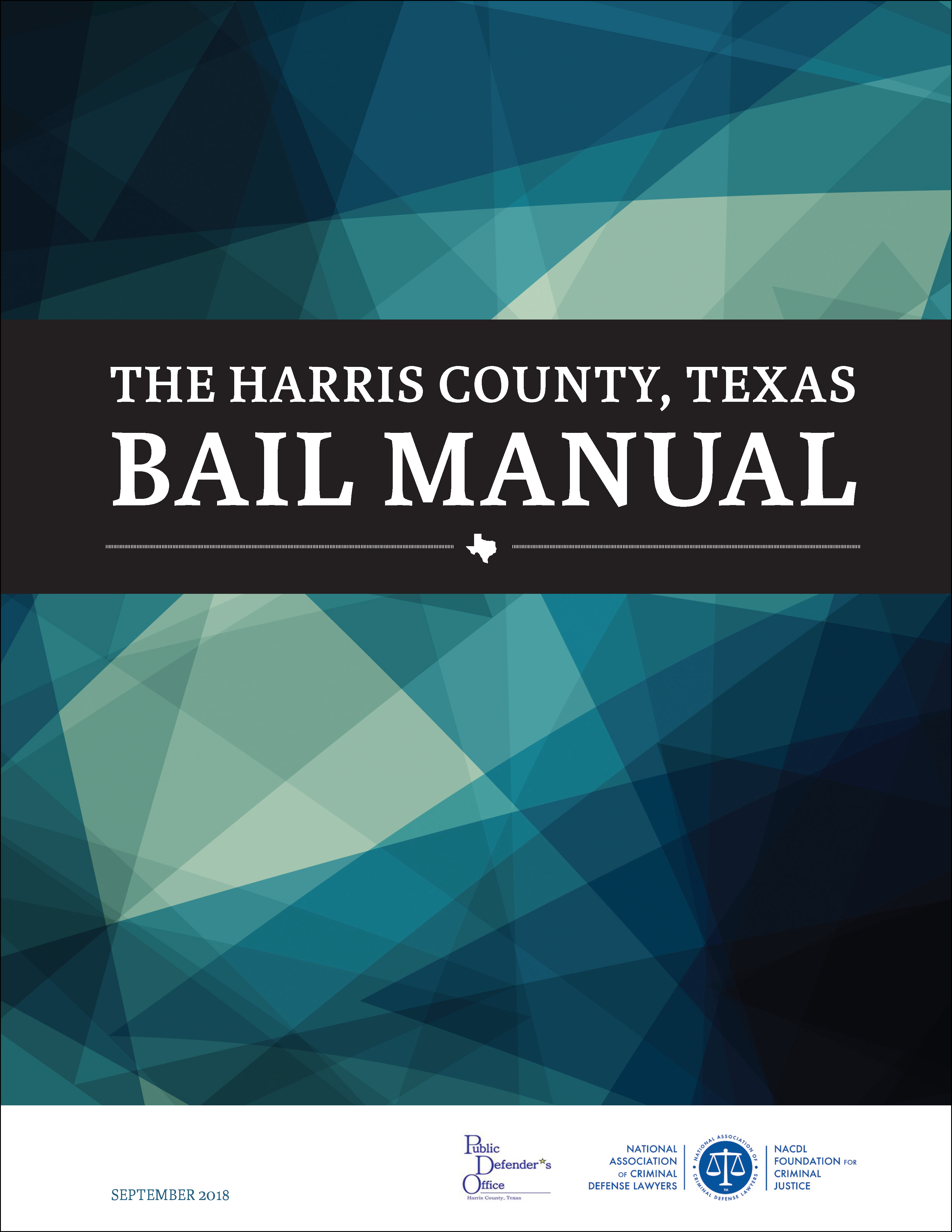 Harris County Pretrial Advocacy Cover